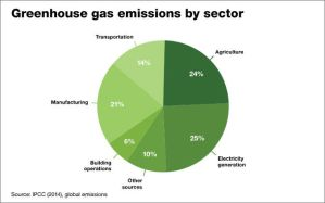 Climate change. GHG emissions by sector