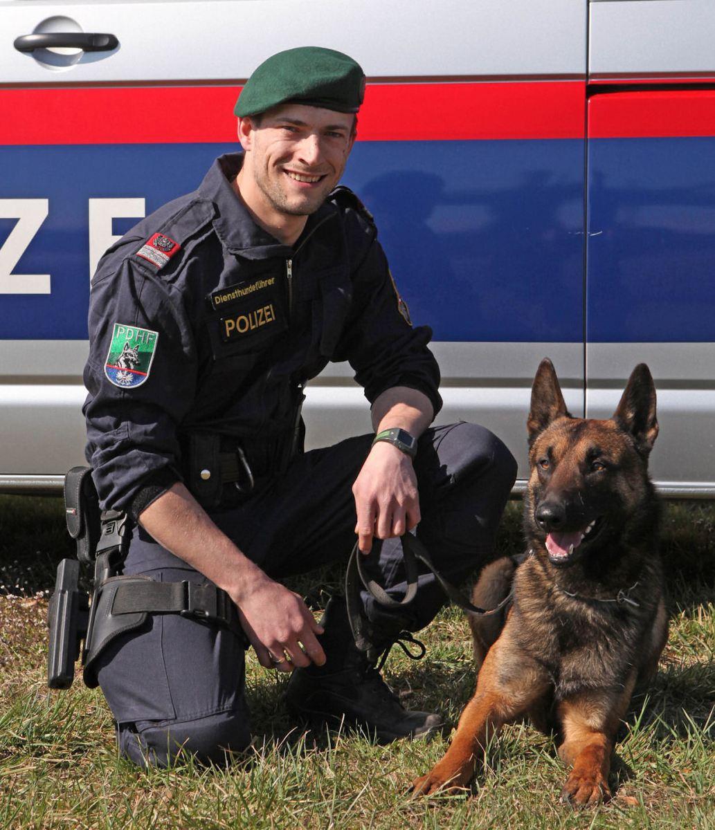 Diensthund Benjo findet vermissten Mann
