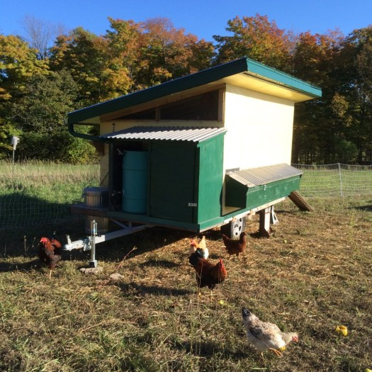 Mobile chicken coop with rain water collection