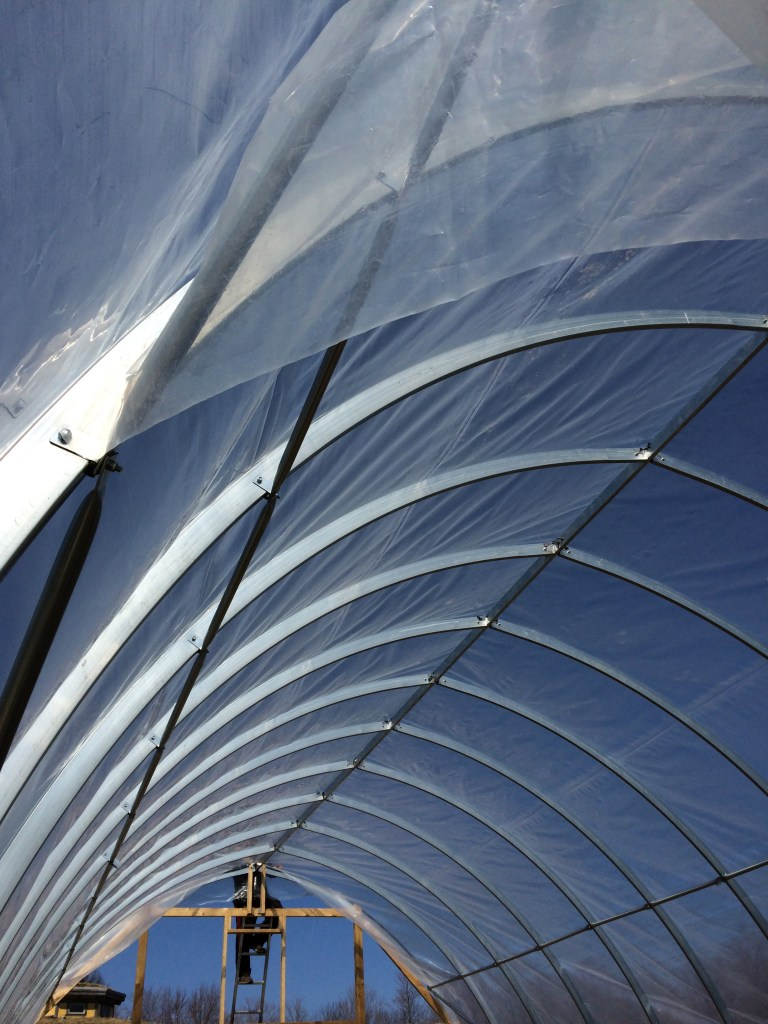 An interior view of the plastic on the hoop house