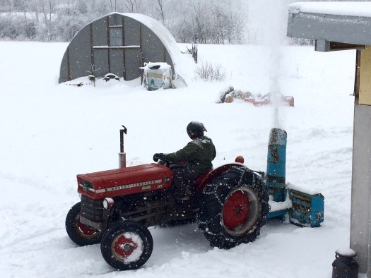 April snow clearing Massey 135 Bird's Nest Garden Farm