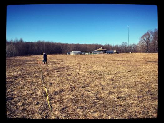 Setting flags in the meadow at Bird's Nest Garden Farm Wiarton land plan