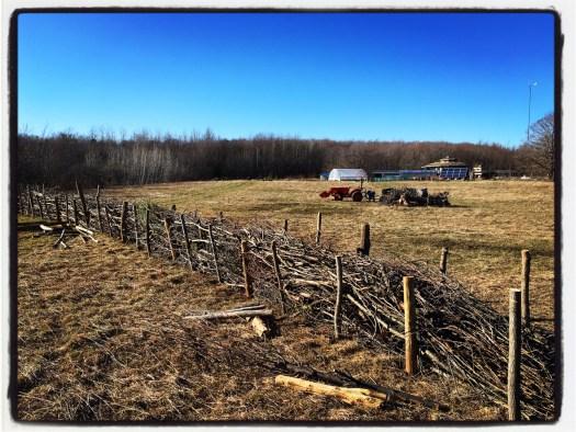 Dead hedge Bird's Nest Garden Farm Wiarton land plan