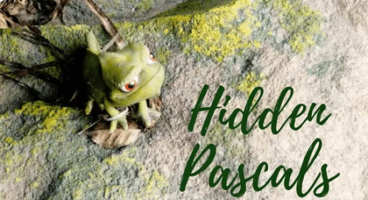 Hidden Pascal Game at Walt Disney World
