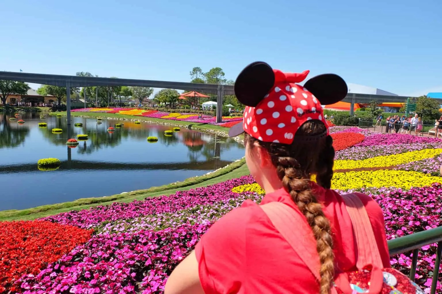 How to Plan A Walt Disney World Vacation: The Basics