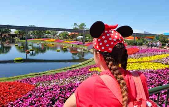 How to Plan A Walt Disney World Vacation: The Basics