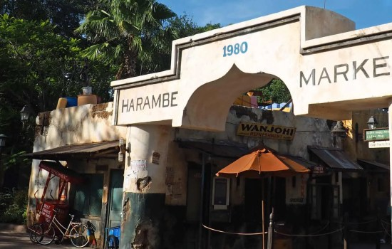 Photo Ops in Animal Kingdom's Harambe Market
