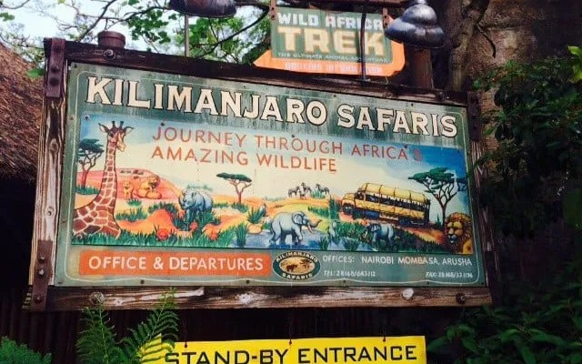 Animal Kingdom Bucket List for Beginners