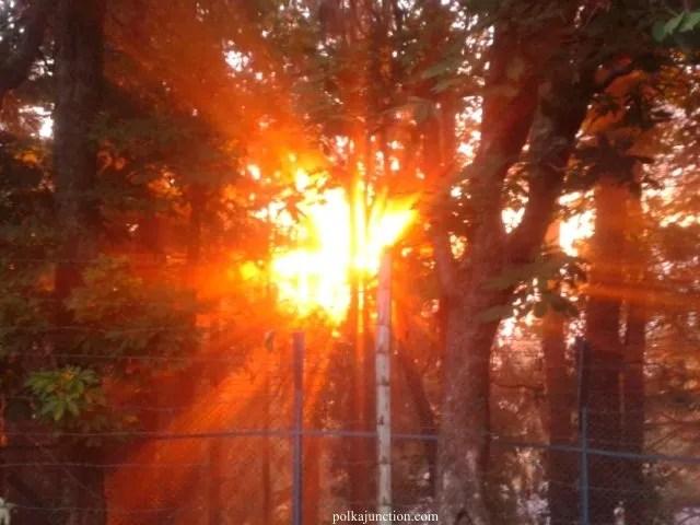 Dalhousie Sunset
