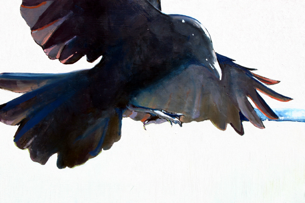 Crow Study, 12 x 18 inches, oil on panel