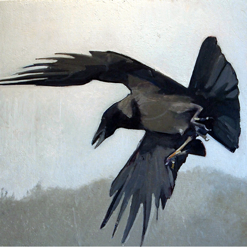 hooded_crow_oil-Final