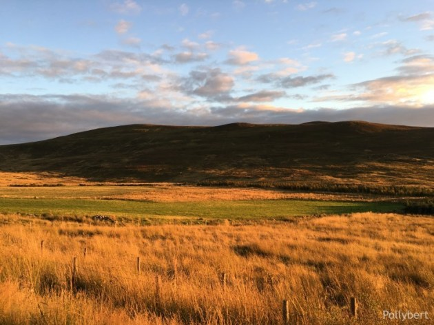 Culloden Moor - Scottish history is totally alive here