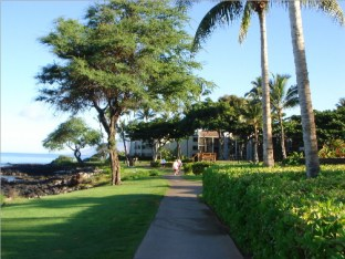 POLO_BEACH_CLUB_MAUI_408_246_1