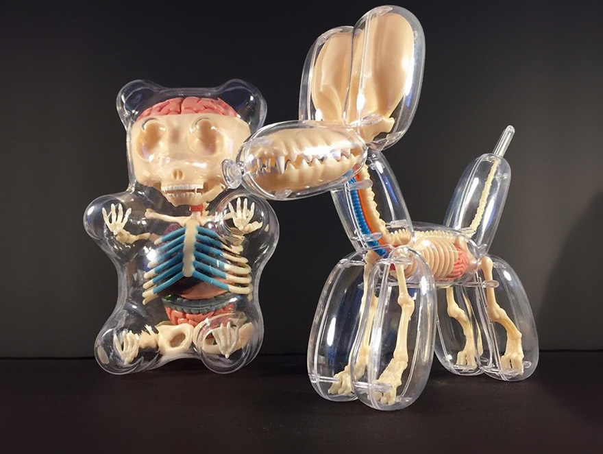 Anatomical Animal Balloons Jason Freeny