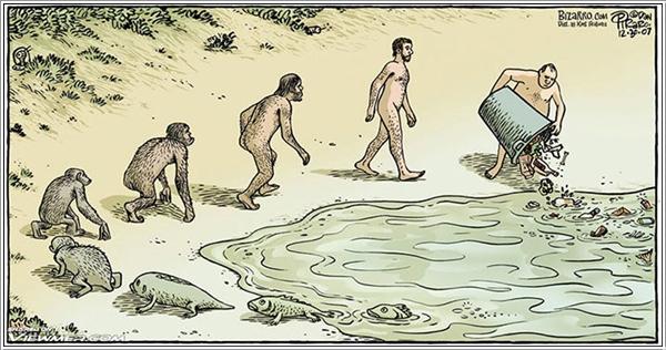 evolution-012