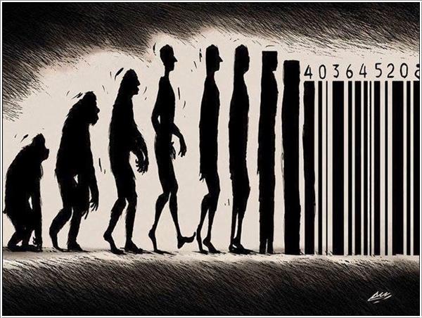 evolution-017