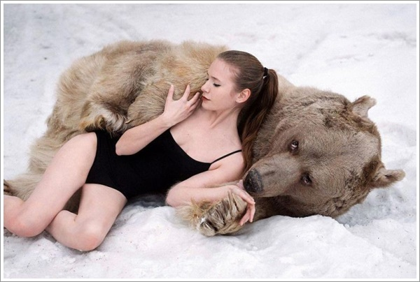 bear-stepan15