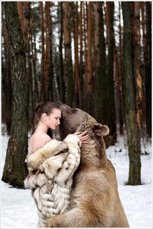 bear-stepan16