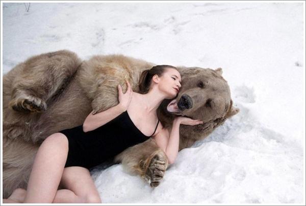 bear-stepan2