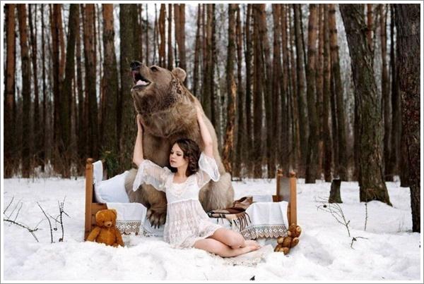 bear-stepan5