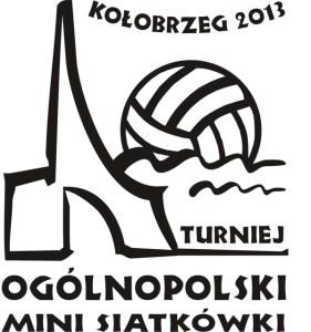 LogoMINI SIATKÓWKA 2013