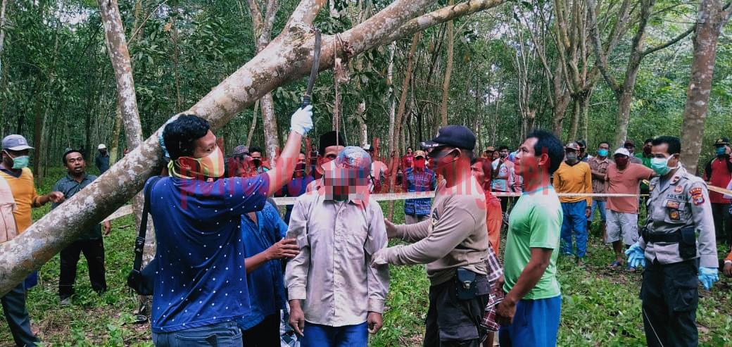 Petugas dibantu warga menurunkan korban dari pohon karet