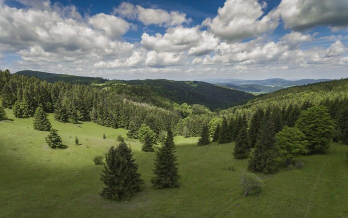 czarna góra polska z drona