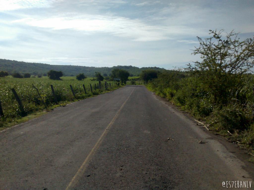 Carretera de Tepeojuma a Los Ahuehuetes.