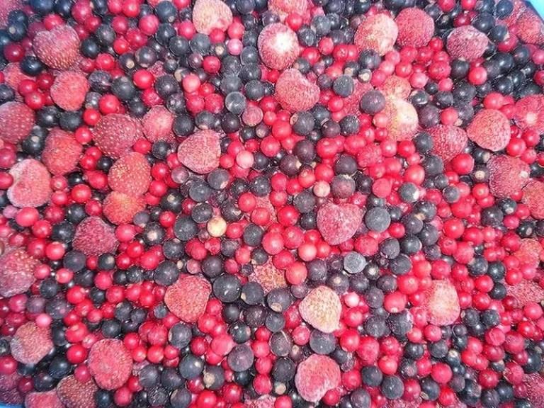 Склады замороженных фруктов в г. Zamość (Люблин)