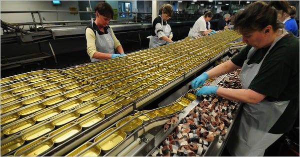 Производство рыбных пресервов в г. Chojnice (Гданьск – Быдгощ)