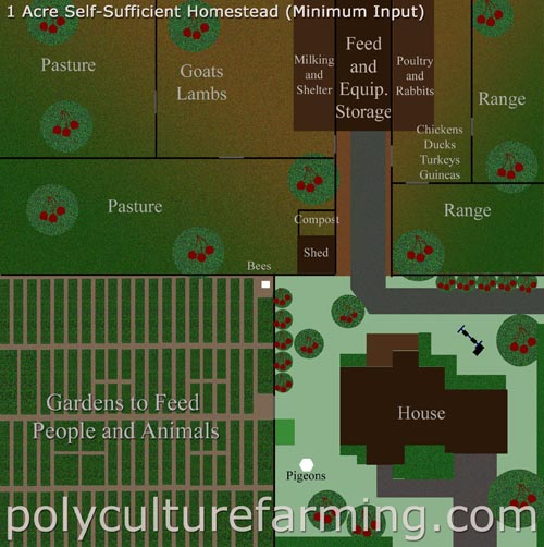 5 Acre Homestead Layout
