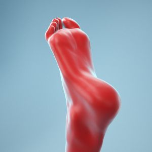 Neutral Pose Realistic Foot