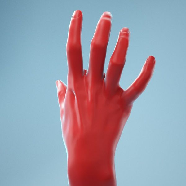 Stretched Claw Realistic Hand