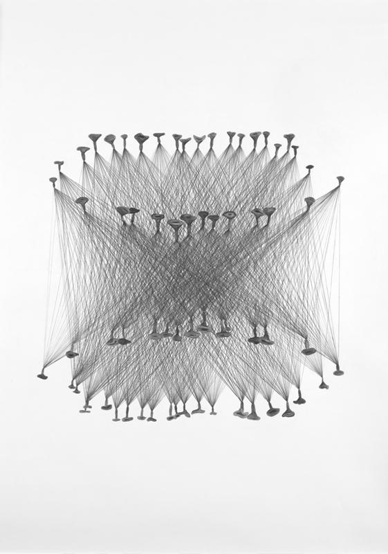 Ingrid Ogenstedt, Mushroom Book1, Pencil drawing on paper, 2014, 59x84cm