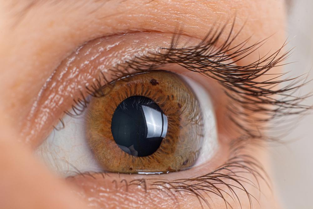 Macro eye photo