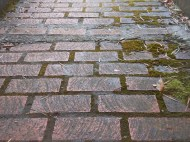 Bricks After Rain