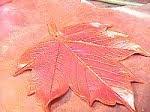 leaf38.jpg