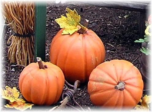 polymer-clay-pumpkins