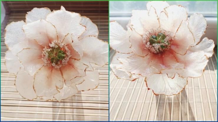 Clay Peony| Polymer clay flower| Polymer clay jewelry vitreous  peony