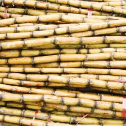 Segmentos de Mercado: Açúcar & Álcool