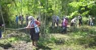 BY D.DOGAN –NOVEMBER 11, 2011 Giriş Toplumumuzda ormanın kelime anlamı düşünüldüğünde akla gelen imgeler sınırlı ve yetersiz olmaktadır. Orman, insanlar için çoğu zaman ağaçlar topluluğunu anımsattığından, orman ürünü denilince de […]