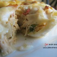 slow cooked chicken stuffed pasta with roasted garlic cream sauce