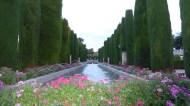 Royal Gardens.