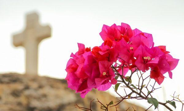 kwiaty i krzyż