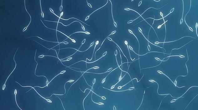 O sexo pode reduzir o risco de câncer de próstata