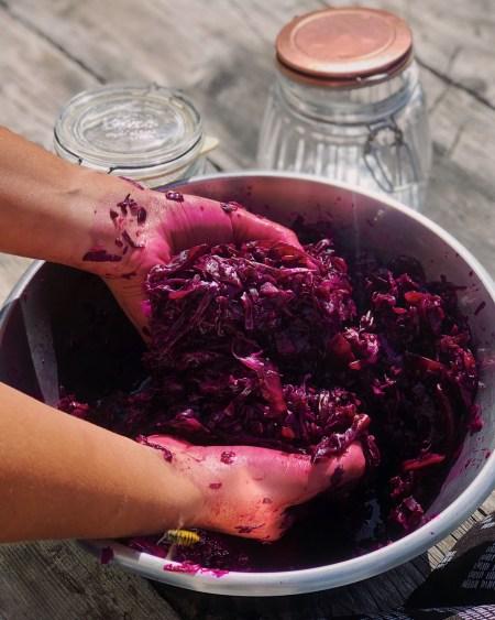 Red Cabbage and Beetroot Sauerkraut