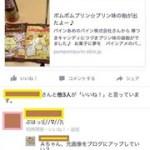 日記☆ポムポムプリンの袋飴後日談