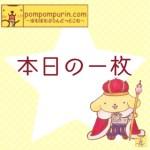 ポムポムプリン☆本日の一枚6/20