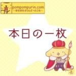 ポムポムプリン☆本日の一枚8/4