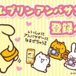 ポムポムプリン☆ポムバサダーの募集再開!!